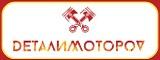 Логотип DеталиМотороV
