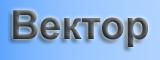 Компания Вектор
